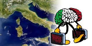 Bando-Brains2South