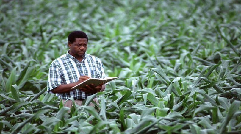 via-agli-esami-abilitanti-alla-professione-di-agrotecnico