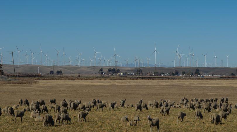 ncentivi-energia-rinnovabile