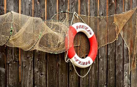 finanziamenti settore ittico lombardia