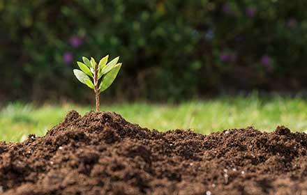 contributi per aziende agricole biologiche