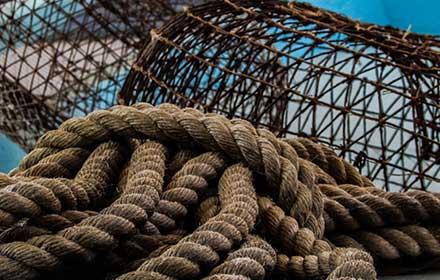 fondo europeo per la pesca