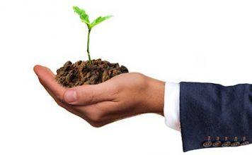 coltivazioni redditizie